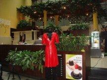 Výstava vintage oděvů s občerstvením od Kofoly (3)