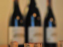 Potěšení smyslů – Dům vína U Závoje (1)