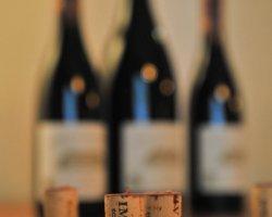 Potěšení smyslů – Dům vína U Závoje