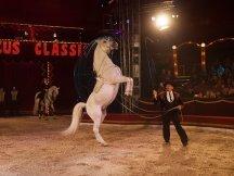 Cirkus Cirkus 2013 by ppm (73)