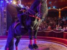 Cirkus Cirkus 2013 by ppm (74)