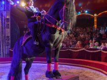 Cirkus Cirkus 2013 (74)