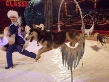 Cirkus Cirkus 2013 by ppm (88)