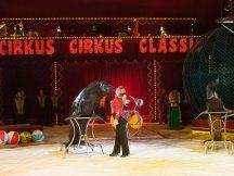 Cirkus Cirkus 2013 by ppm (113)