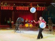 Cirkus Cirkus 2013 by ppm (115)