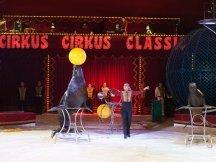 Cirkus Cirkus 2013 by ppm (116)