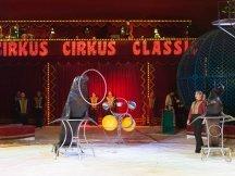 Cirkus Cirkus 2013 by ppm (117)