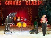 Cirkus Cirkus 2013 by ppm (119)