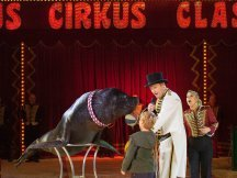 Cirkus Cirkus 2013 by ppm (121)