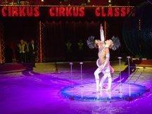 Cirkus Cirkus 2013 (132)