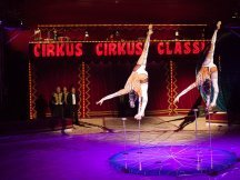 Cirkus Cirkus 2013 (139)
