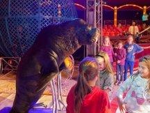Cirkus Cirkus 2013 by ppm (147)