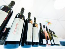 Wine but Innocent Retail Business Mixer 2014 (162)