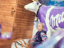 "Milka ""Shop in Shop"" (13)"