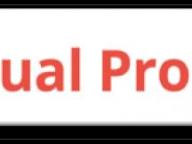 Virtual Promoter (6)