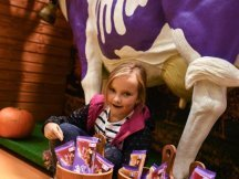 The Fall Shop-in-Shop with the Milka cow (7)
