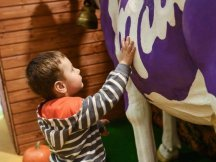 The Fall Shop-in-Shop with the Milka cow (14)