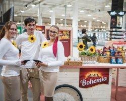 Presentation of Bohemia potato chips quality ingredients