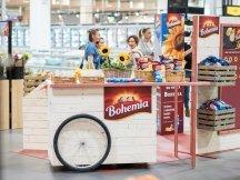 Presentation of Bohemia potato chips quality ingredients (35)