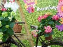 Summer Lounge ppm at a meeting of marketers in Grébovka (11)
