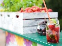 Summer Lounge ppm na setkání marketérů v Grébovce (15)